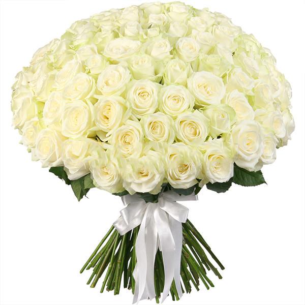 Близняшками открытки, большие открытки с белыми розами