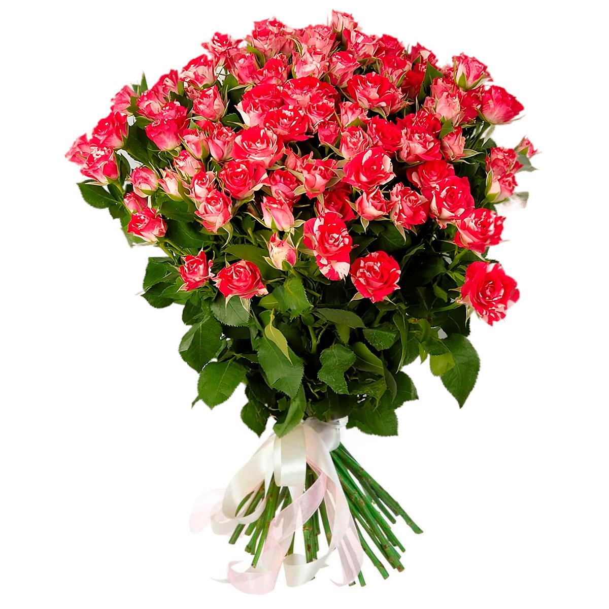 букеты из маленьких роз явление непосредственно